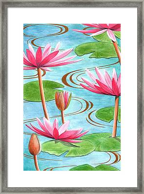 Lotus Flower Framed Print by Jenny Barnard