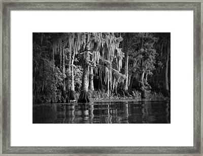 Louisiana Bayou Framed Print by Mountain Dreams
