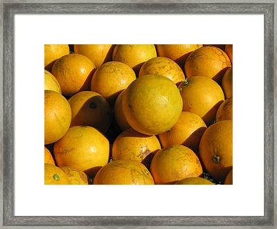 Louisiana Sweets Framed Print by Beth Vincent