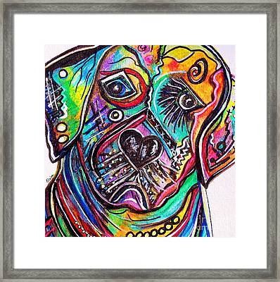Lovable Lab Framed Print by Eloise Schneider
