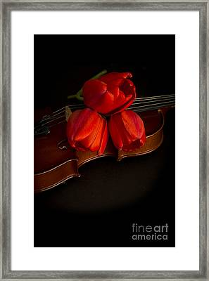 Love And Romance Framed Print by Edward Fielding