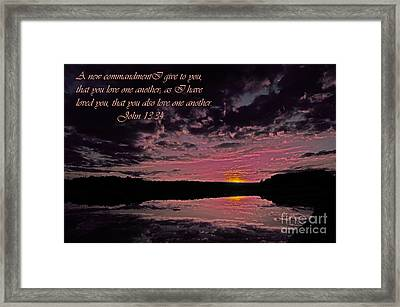 Love Framed Print by Donna Brown