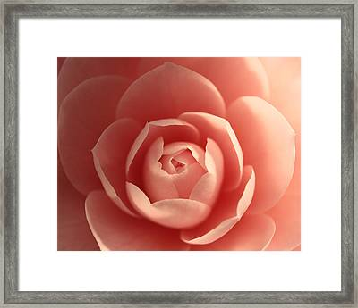 Love .... Expanding Framed Print by Connie Handscomb