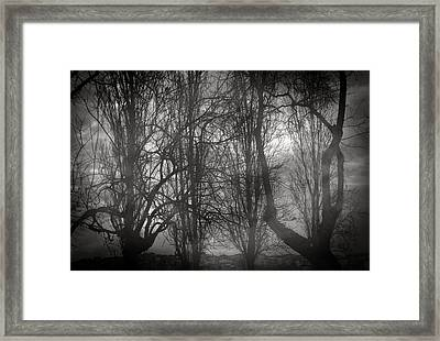 Love Is Odd Framed Print by Taylan Soyturk
