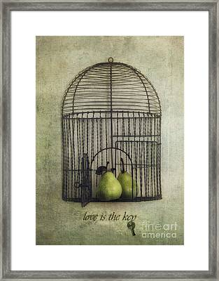Love Is The Key With Typo Framed Print by Priska Wettstein