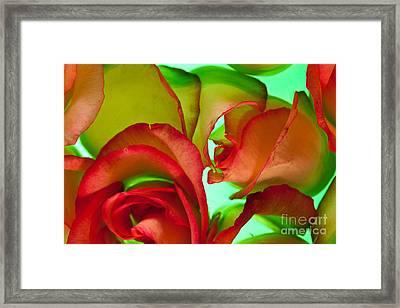 Love Me Tender Framed Print by Bobby Villapando