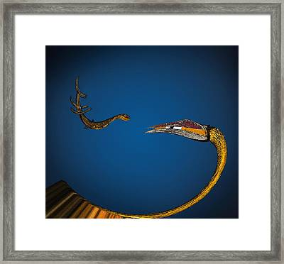 Love Or Lunch? Framed Print by Murray Bloom