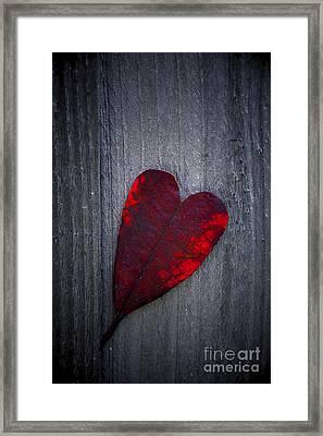 Love Framed Print by Svetlana Sewell