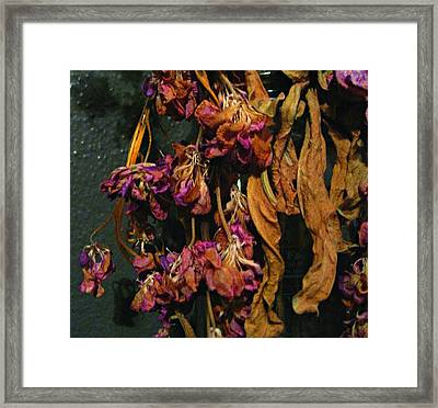 Lovely Death Framed Print by Sherry Dooley
