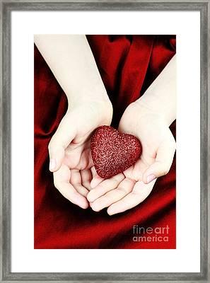 Lovingly Framed Print by Stephanie Frey