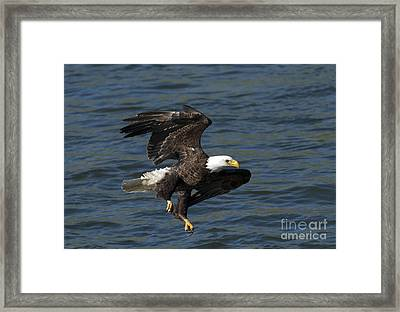 Low Over The Water Framed Print by Mike  Dawson