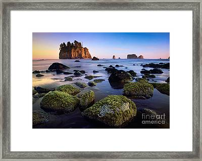 Low Tide At Second Beach Framed Print by Inge Johnsson