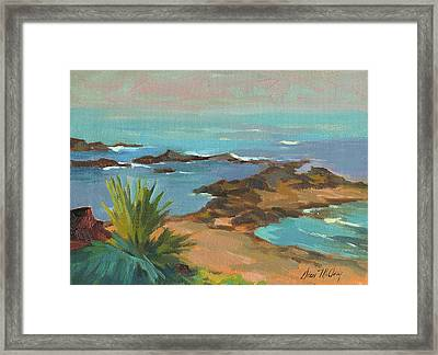Low Tide Framed Print by Diane McClary