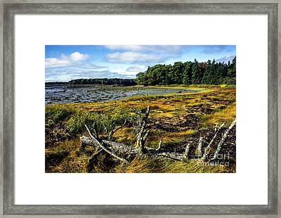 Low Tide Reach Road Framed Print by Thomas R Fletcher