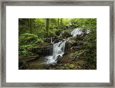 Lower Amicalola Falls Framed Print by Debra and Dave Vanderlaan