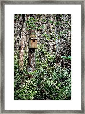 Loxahatchee Refuge-3 Framed Print by Rudy Umans