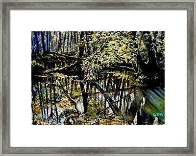 Lubianka-4 Mystery Of Swamp Forest Framed Print by Henryk Gorecki