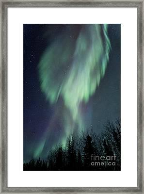 Lucid Dream Framed Print by Priska Wettstein