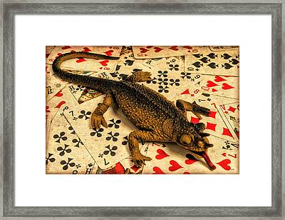 Lucky Again Framed Print by Jeff  Gettis