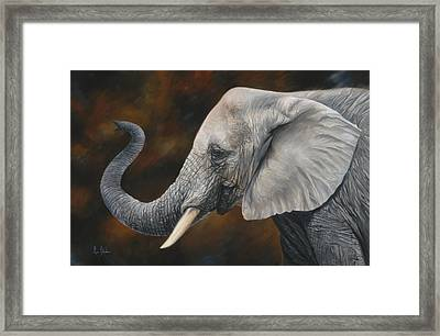 Lucky Framed Print by Lucie Bilodeau