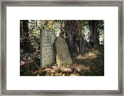 Lucy Framed Print by Tom Mc Nemar