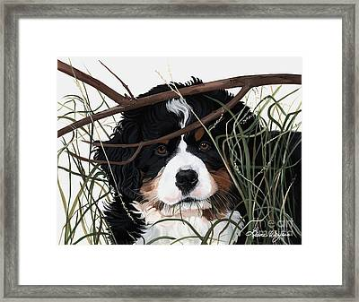 Lucy You've Got Some'splainin To Do Framed Print by Liane Weyers