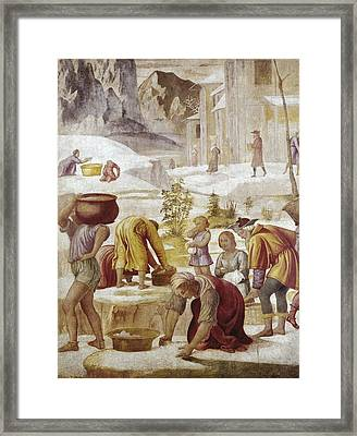 Luini, Bernardino 1480-1532. The Framed Print by Everett