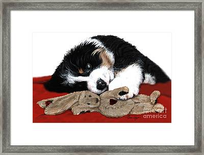 Lullaby Berner And Bunny Framed Print by Liane Weyers