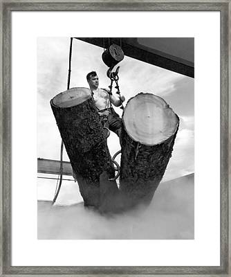 Lumber Mill Worker Framed Print by Underwood Archives