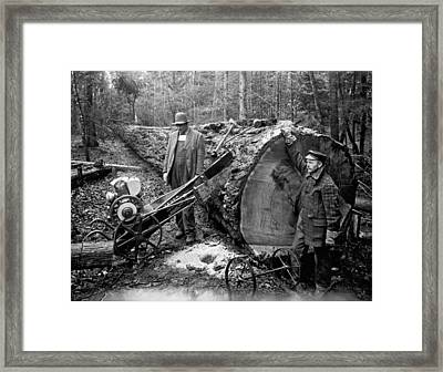 Lumberjack With Early Chainsaw Framed Print by Underwood Archives