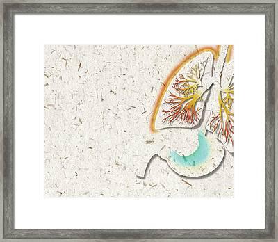 Lung Inflammation Framed Print by Harvinder Singh