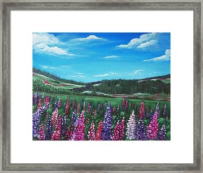 Lupine Hills Framed Print by Anastasiya Malakhova