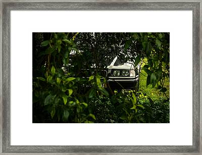 Lurking II Framed Print by Marco Oliveira