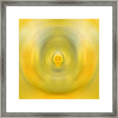 Luscious Lemon - Abstract Art By Sharon Cummings Framed Print by Sharon Cummings