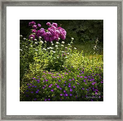 Lush Blooming Garden  Framed Print by Elena Elisseeva