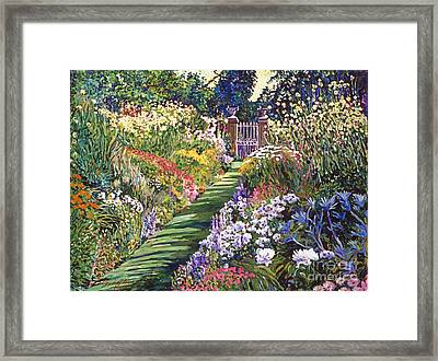 Lush Floral Pathway Framed Print by David Lloyd Glover