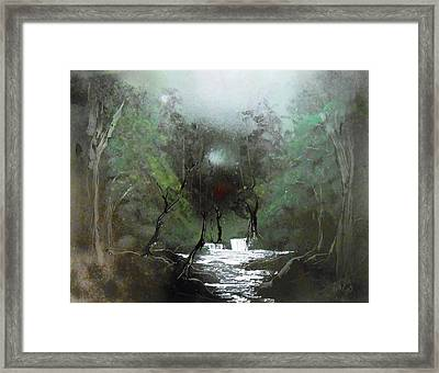Lush Forest Framed Print by Aaron Beeston