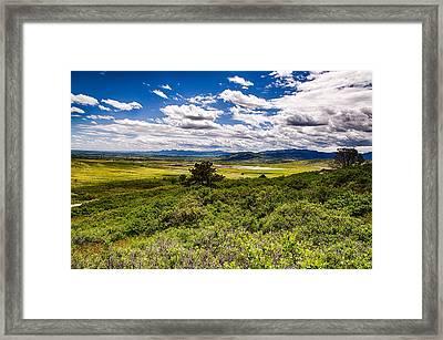 Lush Landscapes Framed Print by Tony Boyajian
