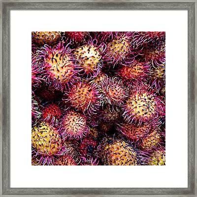 Lychee Fruit - Mercade Municipal Framed Print by Julie Niemela