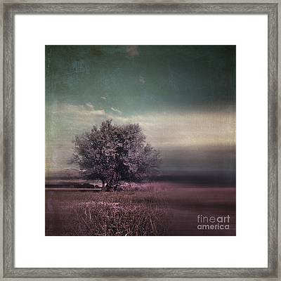 Lyrical Tree - C01dt01 Framed Print by Variance Collections
