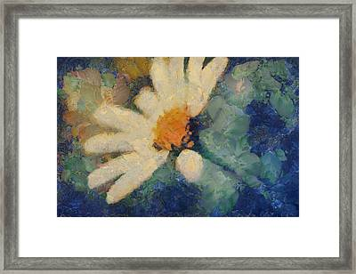 Ma Marguerite - D101-slv4clf Framed Print by Variance Collections