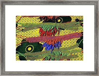 Maasai Beadwork Framed Print by Michele Burgess