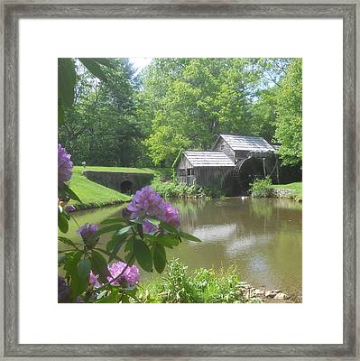 Mabry Mill In May Framed Print by Diannah Lynch