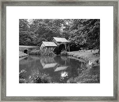 Mabry Mill Framed Print by Mel Steinhauer