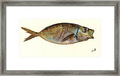 Mackerel Scad Framed Print by Juan  Bosco