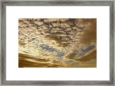 Mackerel Sky Golden Framed Print by Amanda Holmes Tzafrir