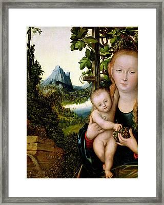 Madonna And Child Framed Print by Lucas the elder Cranach