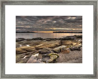 Madrona Point Framed Print by Randy Hall