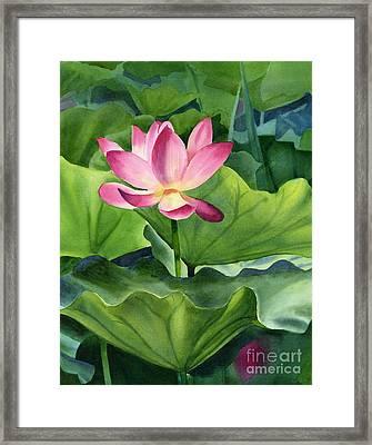 Magenta Lotus Blossom Framed Print by Sharon Freeman