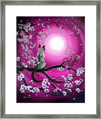 Magenta Morning Sakura Framed Print by Laura Iverson